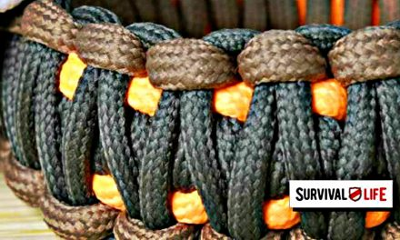 Paracord: Everything You'll Ever Need To Know