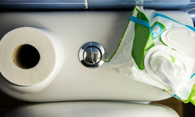 5 Toilet Paper Alternatives That Will Definitely Clog Your Pipes — And 2 Things That Won't