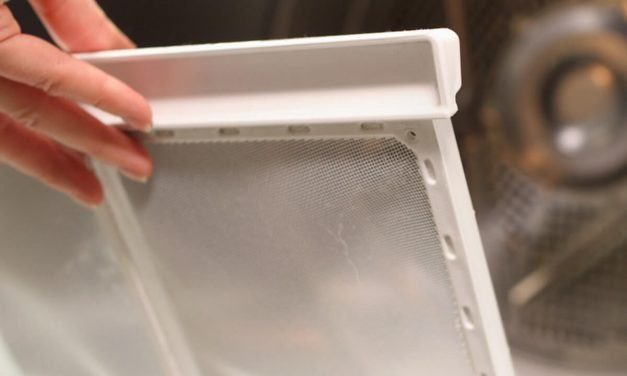8 Ways to Use Dryer Lint in Your Backyard and Garden