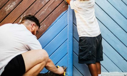 7 Best Paints for an Outdoor Fence
